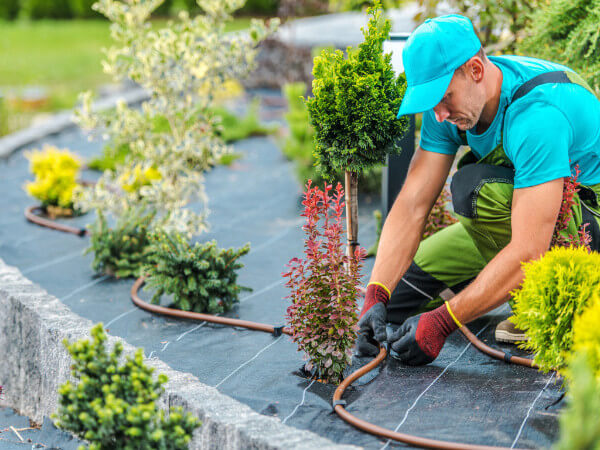 Selling landscaping as a crime deterrent