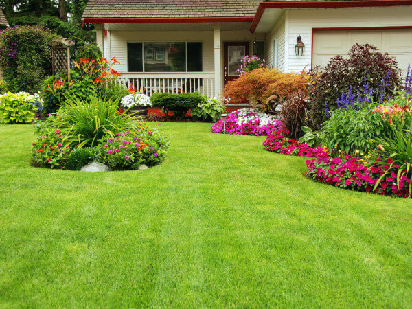 True Winds Consulting Offers Landscape Business Services